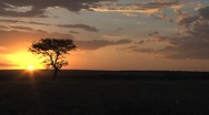 Stock Video Footage of Sunset Kenya