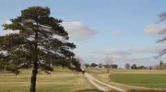 Country Drive - Old Cemetary - Trees - Driving Stock Footage