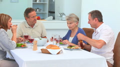 Elderly friends during the lunch time Stock Footage