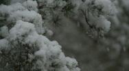 Snow falling 4 Scotland Stock Footage