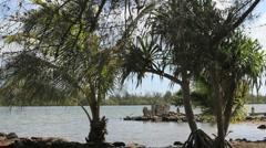Hauhine sacred marae at Maeva  Stock Footage