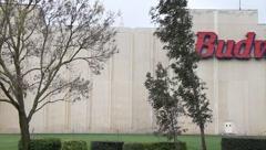 Anheuser-Busch - stock footage