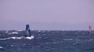 Windsurfing jump  Stock Footage