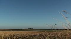 Wheat Field - stock footage