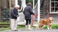 Older couple cleaning up after dog Stock Footage