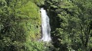 Trafalgar waterfall in Dominica Stock Footage