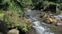 A mountain river in Dominica Stock Footage