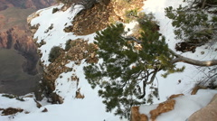 Grand Canyon Winter Scenic Stock Footage