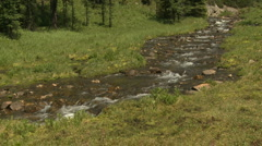 Pristine alpine stream 01 - stock footage