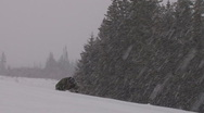 Stock Video Footage of Blizzard Hiker #3 of 4