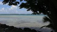 Bora Bora lagoon framed by tree Stock Footage