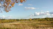 Autumn landscape Stock Footage