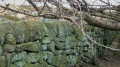 Dry Stone Wall Stock Footage
