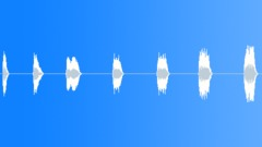 Bagpipes,Honks,Short,Lite - sound effect