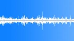 Birds,Squeaks,Group,Many,Bat-Like Sound Effect