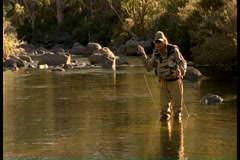 Man fly fishing in stream Stock Footage