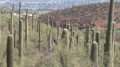 Tucson-Hiking People Stock Footage