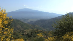 Sicily Etna pans to yellow flowers  Stock Footage