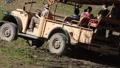 African Jeep Safari Tour 6089 Footage