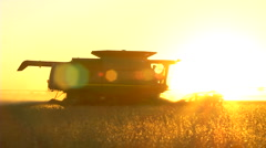 Harvesting soybeans at dusk Stock Footage