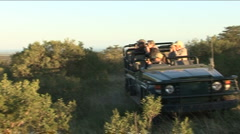 Game drive, lion spotting Stock Footage