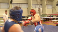 Boxing Stock Footage