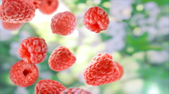 Stock Video Footage of Falling fresh raspberries.