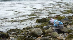 Child sitting on the beach throwing rocks in the water Stock Footage