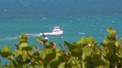 Puerto Rico - Sword Fish - Sail Fish Power Fishing Boat 2 Stock Footage