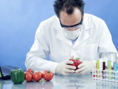 Male scientist in laboratory examining red pepper and writing results on laptop Stock Footage
