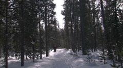 Snowshoe 10-B Stock Footage