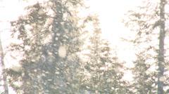 Snow Globe - stock footage