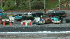 Madeira - Camara de Lobos Stock Footage