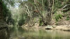 Kziv river at spring. Calm waters in the river. Stock Footage