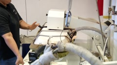 Dry Cleaning Press Stock Footage