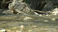 Kziv river at spring. Slow motion. Murmuring river. Stock Footage