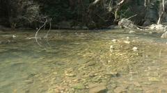 Kziv river at spring. Murmuring river. Stock Footage