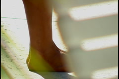Basking in the Sun Stock Footage