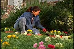 Woman gardening Stock Footage