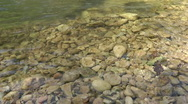 Stock Video Footage of Kziv river at spring. Bottom of a shallow river. Pollution.