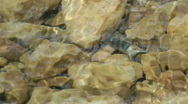 Kziv river at spring. Slow motion.Bottom of a shallow river. Stock Footage