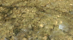 Kziv river at spring.Bottom of a shallow river. - stock footage