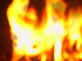 At the Fireplace Stock Footage