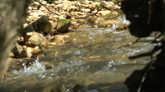 Kziv river at spring. Slow motion. Water streaming under the big dead tree. Stock Footage