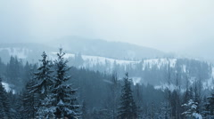 Snow Falling in Carpathians (Full HD) Stock Footage
