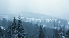 Snow Falling in Carpathians (Full HD) - stock footage