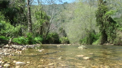 Kziv river at spring. Bottom of a shallow river. - stock footage
