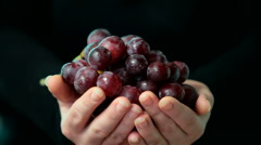 Sweet red grapes in woman hands Stock Footage