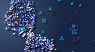 Stock Video Footage of DNA with Letters Representing Base Pairs