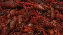 Boiled crawfish 2 Stock Footage
